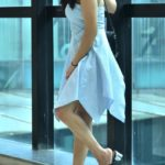 Blue Gingham Shortdress